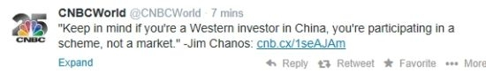 大空头查诺斯:中国市场是场骗局