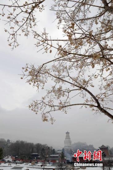 中国佛教圣地五台山被警告 景区开展全面整顿