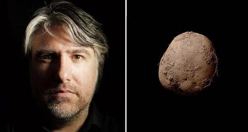 摄影师拍土豆照卖75万英镑 盘点看不懂的天价艺术品