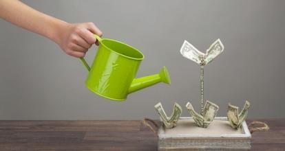 绿麻雀众筹系统:众筹推进了金融体系的平民化